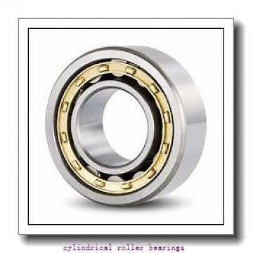 3.751 Inch | 95.286 Millimeter x 5.512 Inch | 140 Millimeter x 1.024 Inch | 26 Millimeter  LINK BELT M1216EB  Cylindrical Roller Bearings
