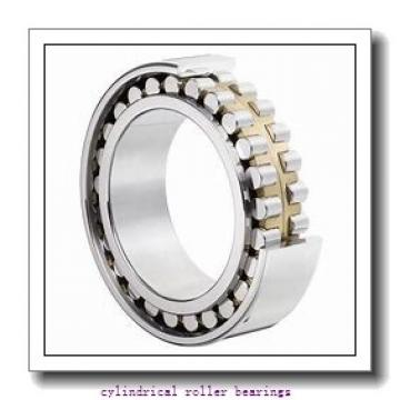 1.378 Inch | 35 Millimeter x 1.844 Inch | 46.843 Millimeter x 0.827 Inch | 21 Millimeter  LINK BELT MA1307  Cylindrical Roller Bearings