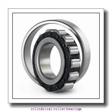 1.969 Inch | 50 Millimeter x 4.331 Inch | 110 Millimeter x 1.75 Inch | 44.45 Millimeter  LINK BELT MA5310TV  Cylindrical Roller Bearings