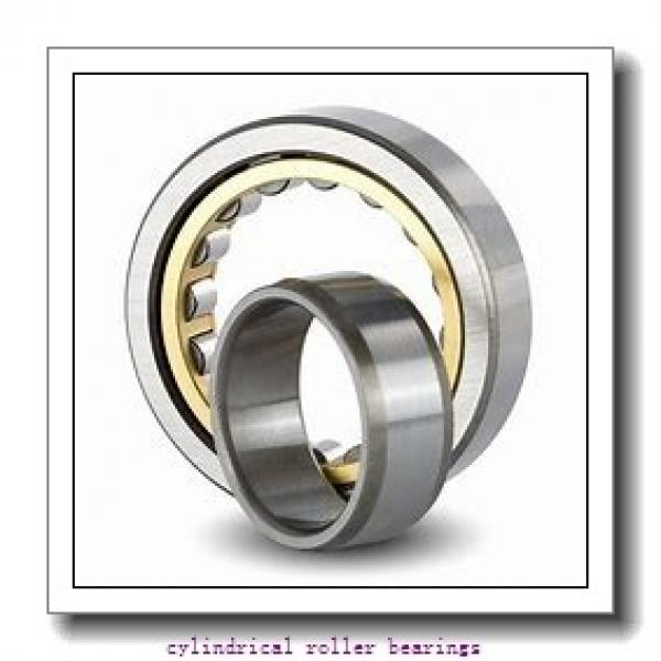 1.772 Inch | 45 Millimeter x 3.937 Inch | 100 Millimeter x 1.563 Inch | 39.7 Millimeter  LINK BELT MA5309EXC1424  Cylindrical Roller Bearings #1 image