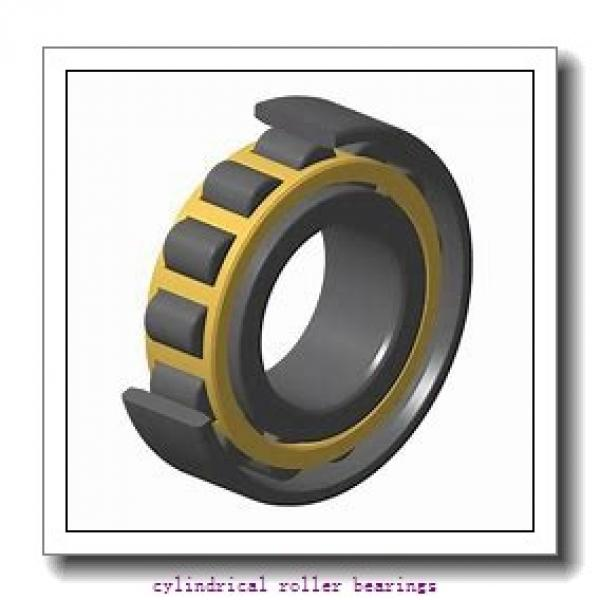 2.362 Inch | 60 Millimeter x 4.333 Inch | 110.056 Millimeter x 0.866 Inch | 22 Millimeter  LINK BELT MR1212EAX  Cylindrical Roller Bearings #2 image